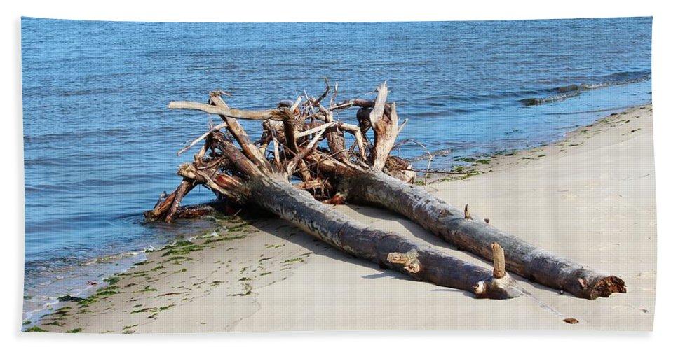 Driftwood Bath Sheet featuring the photograph Driftwood by Cynthia Guinn