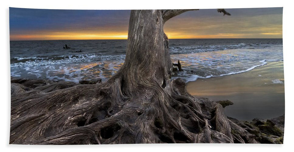 Clouds Bath Sheet featuring the photograph Driftwood On Jekyll Island by Debra and Dave Vanderlaan