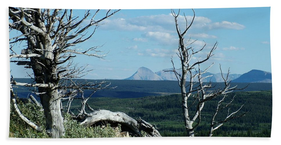 Gnarled Trees Bath Sheet featuring the photograph Gnarled Trees And Divide Mountain by Tracey Vivar