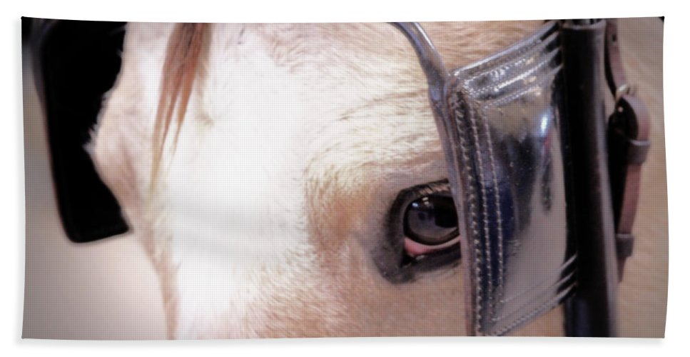 Aqha Hand Towel featuring the photograph Driving by Lynn Sprowl