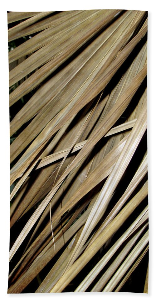 Pattern Hand Towel featuring the photograph Dry Palm Leaves by Bob Slitzan