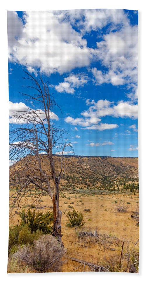 Desert Hand Towel featuring the photograph Dry Landscape by Jess Kraft