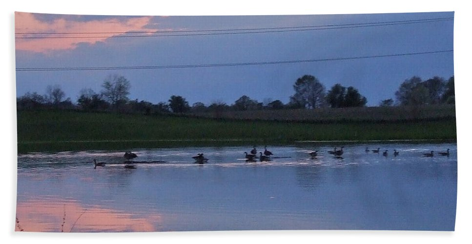 Pink Bath Sheet featuring the photograph Ducks And Geese At Sunset by Susan Wyman