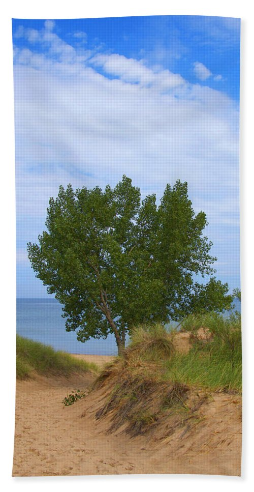 Dune Hand Towel featuring the photograph Dune - Indiana Lakeshore by Ann Horn