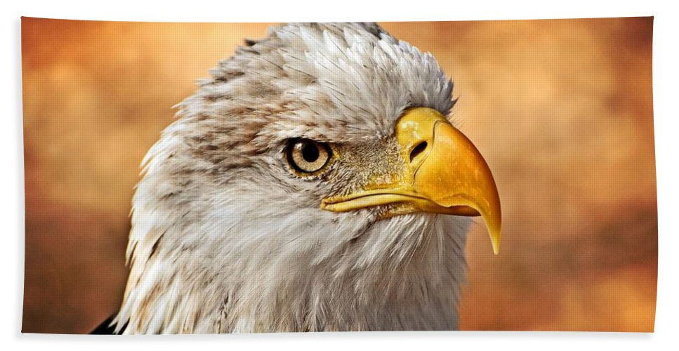 Eagle Hand Towel featuring the photograph Eagle At Sunset by Marty Koch