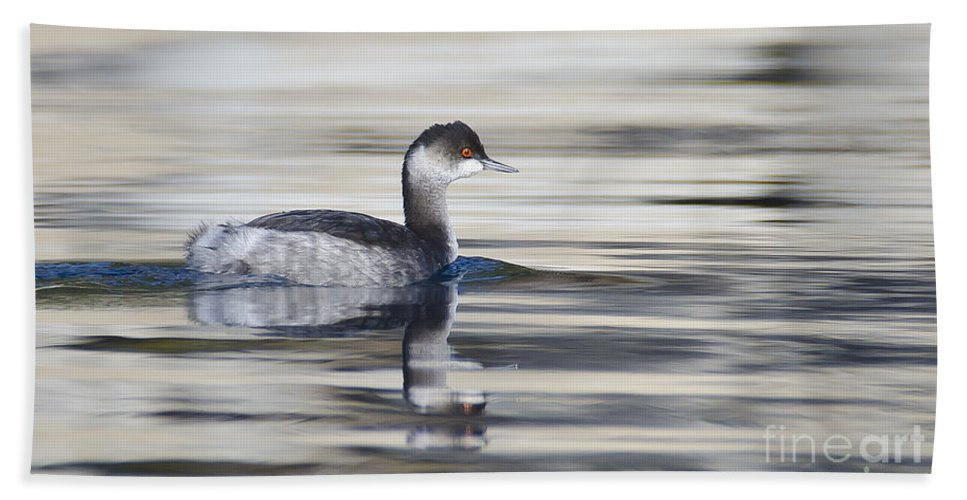 Grebe Hand Towel featuring the photograph Eared Grebe by Dianne Phelps