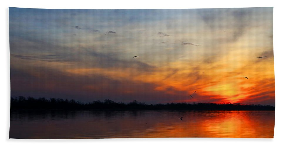 Sunrise Bath Sheet featuring the photograph Early Birds by Judy Vincent