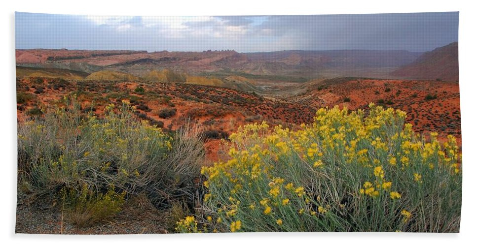 Landscape Photograph Hand Towel featuring the photograph Early Evening Landscape At Arches National Park by Cascade Colors