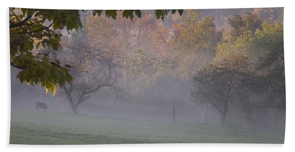 Landscape Bath Sheet featuring the photograph Early Morning Country by Karol Livote