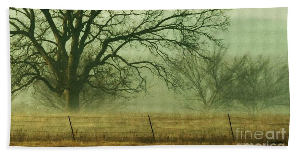 Landscape Hand Towel featuring the photograph Early Morning Fog 019 by Robert ONeil