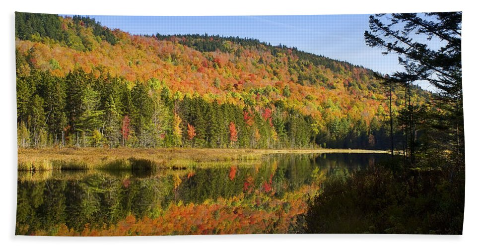Fall Foliage Bath Sheet featuring the photograph Early Morning On Greenough Pond by John Vose