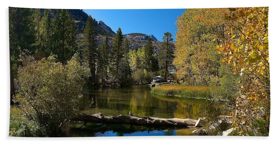 Eastern Sierras Hand Towel featuring the photograph Eastern Sierras 13 by Richard J Cassato