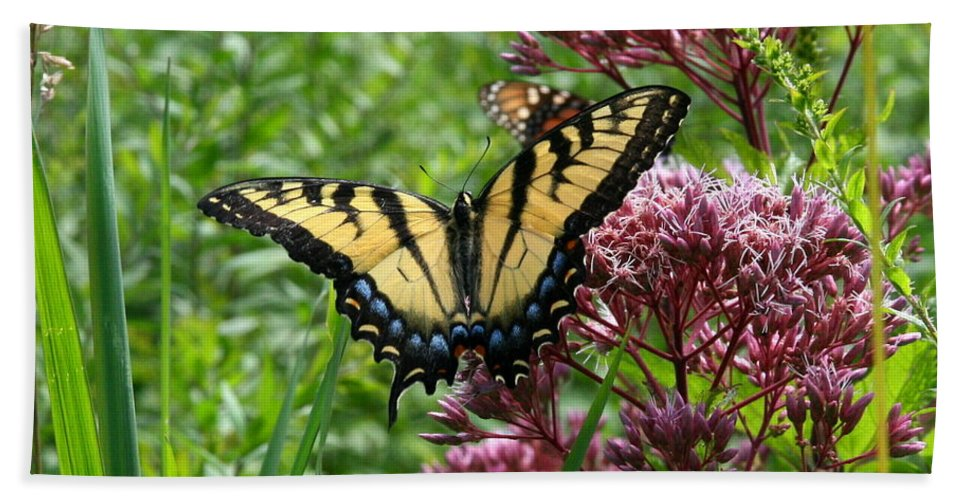 Butterflies Bath Sheet featuring the photograph Eastern Tiger Swallowtail On Joe Pye Weed by Neal Eslinger
