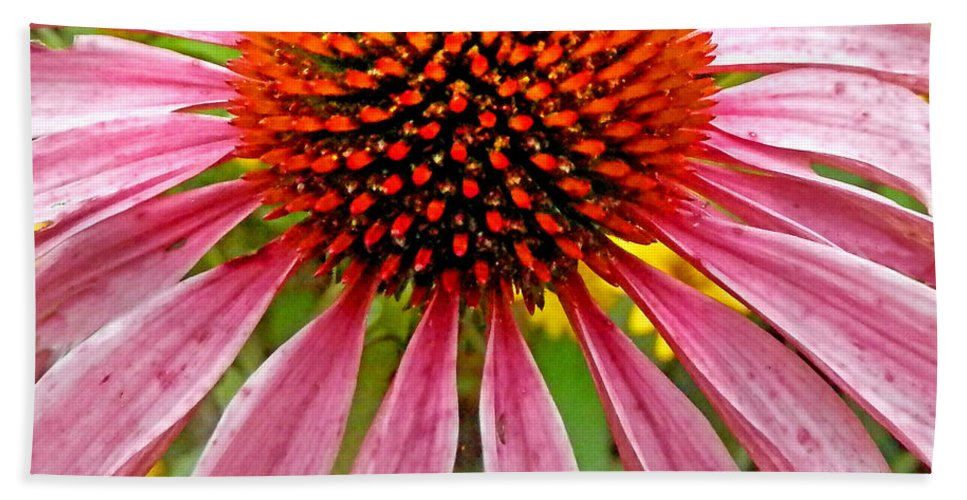 Duane Mccullough Bath Sheet featuring the photograph Echinacea Flower Upclose Filtered by Duane McCullough