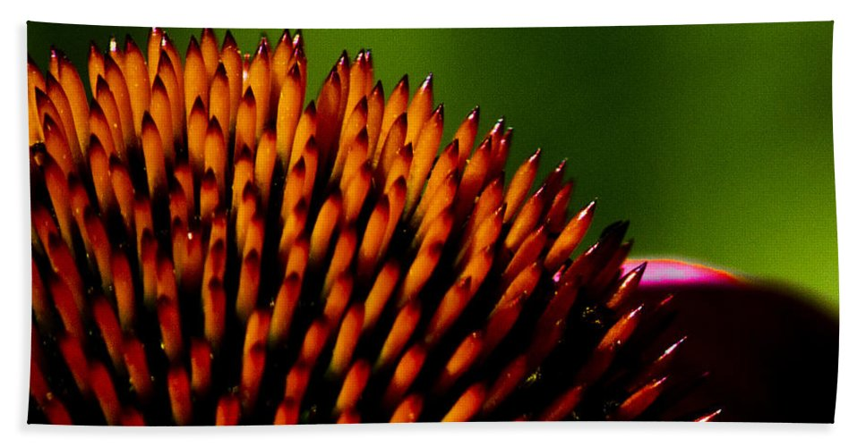 Echinacea Hand Towel featuring the photograph Echinacea Up Close by Patrick Moore