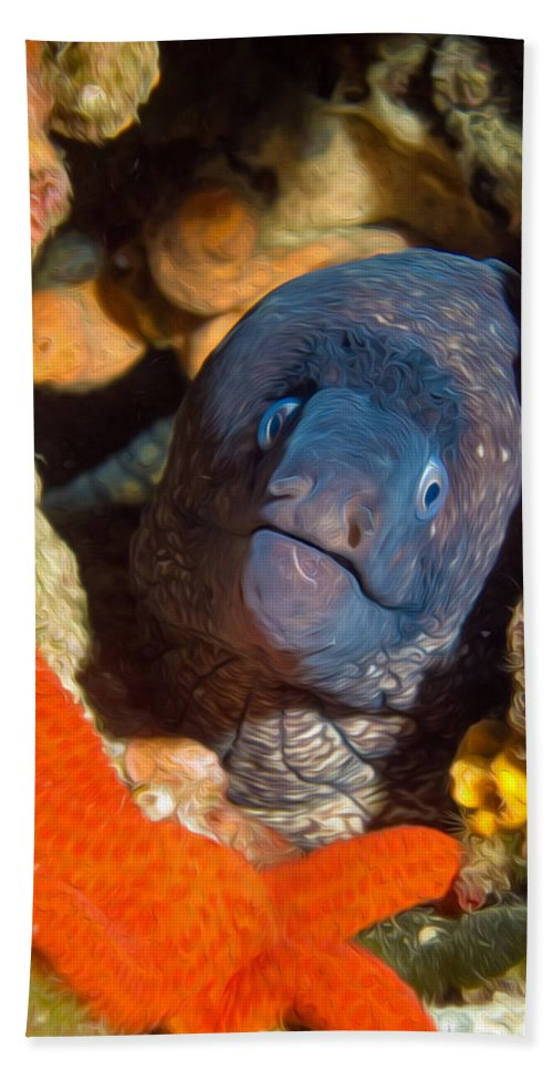 Moray Bath Sheet featuring the digital art Eel And Starfish by Roy Pedersen