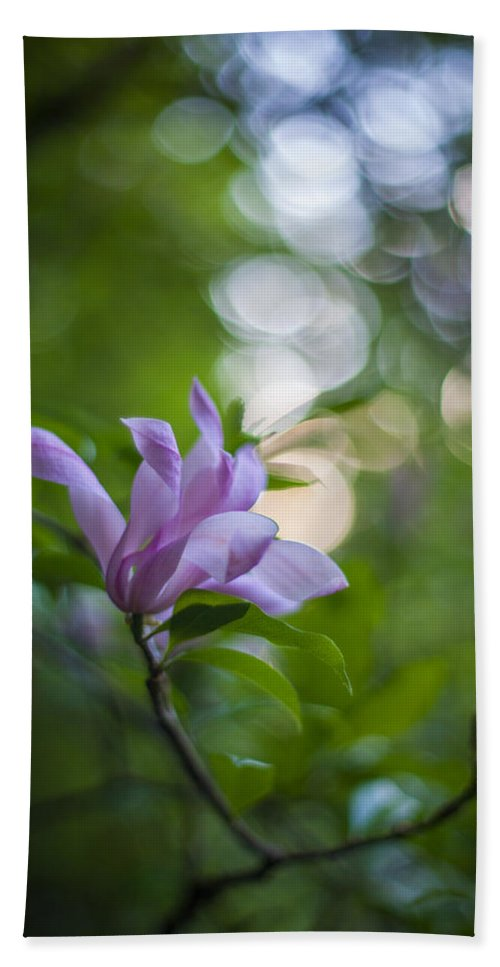 Flower Bath Sheet featuring the photograph Effervescent Magnolia by Mike Reid