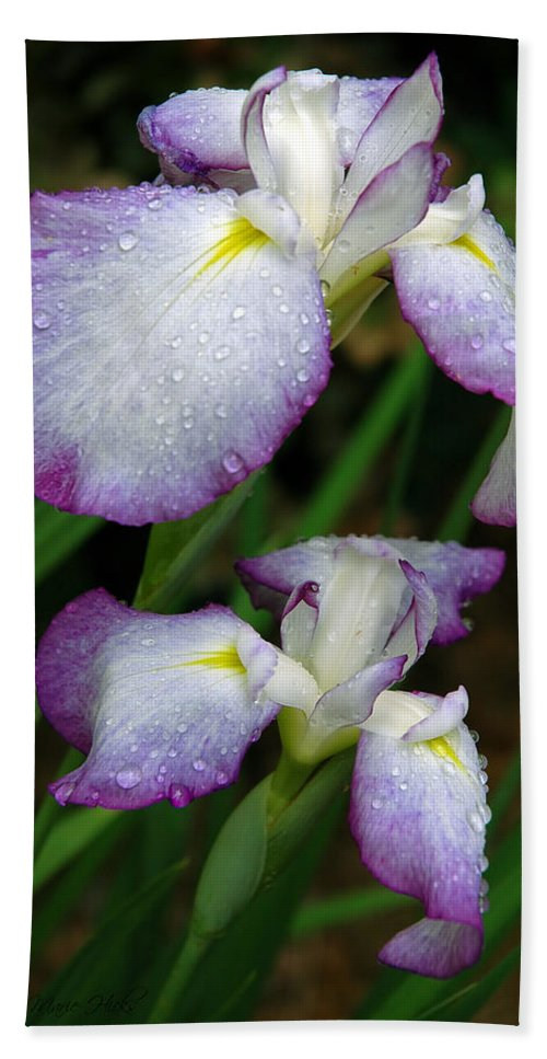 Iris Hand Towel featuring the photograph Elegant Purple Iris by Marie Hicks