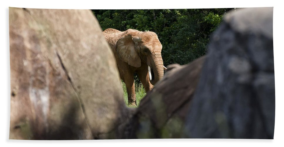 African Elephant Hand Towel featuring the digital art Elephant Spotted Between Rocks by Chris Flees