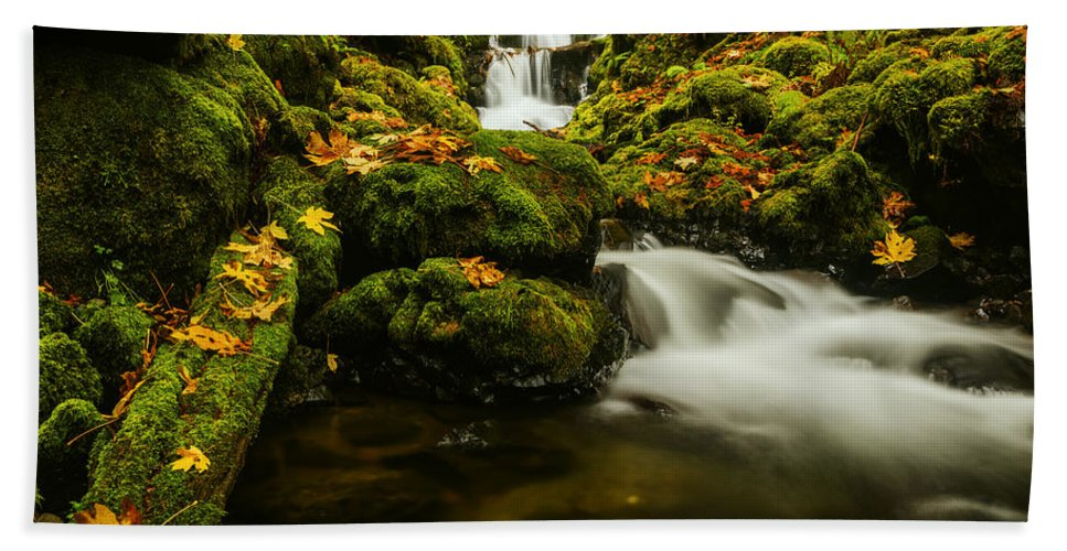 Emerald Falls Bath Sheet featuring the photograph Emerald Falls In Columbia River Gorge Oregon Usa by Vishwanath Bhat