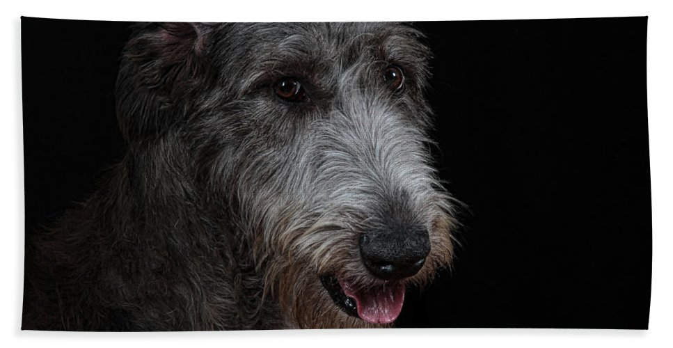 Irish Wolfhound Hand Towel featuring the photograph Irish Wolfhound II by Agustin Uzarraga