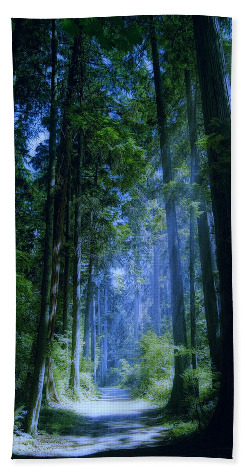 Stanley Park Bath Sheet featuring the photograph Enchanted Forest by Claude LeTien