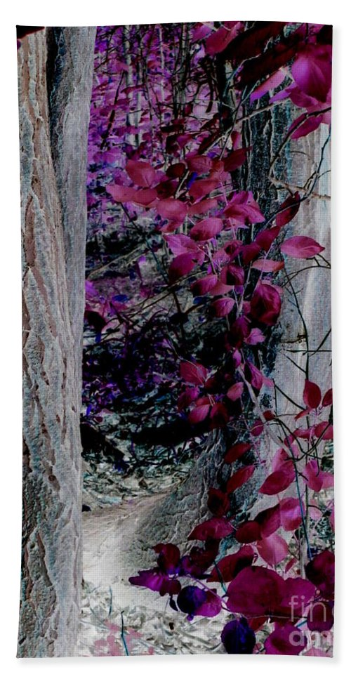 Enchanted Hand Towel featuring the photograph Enchanted Forest by Martin Howard