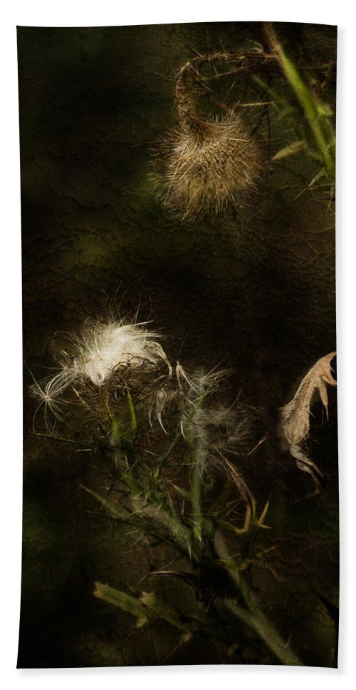 Milkweed Bath Sheet featuring the photograph Enigma No 2 by Belinda Greb