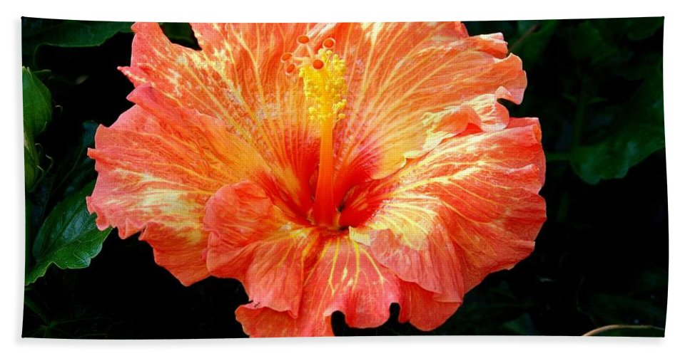 Hibiscus Hand Towel featuring the photograph Enticement by Karen Wiles
