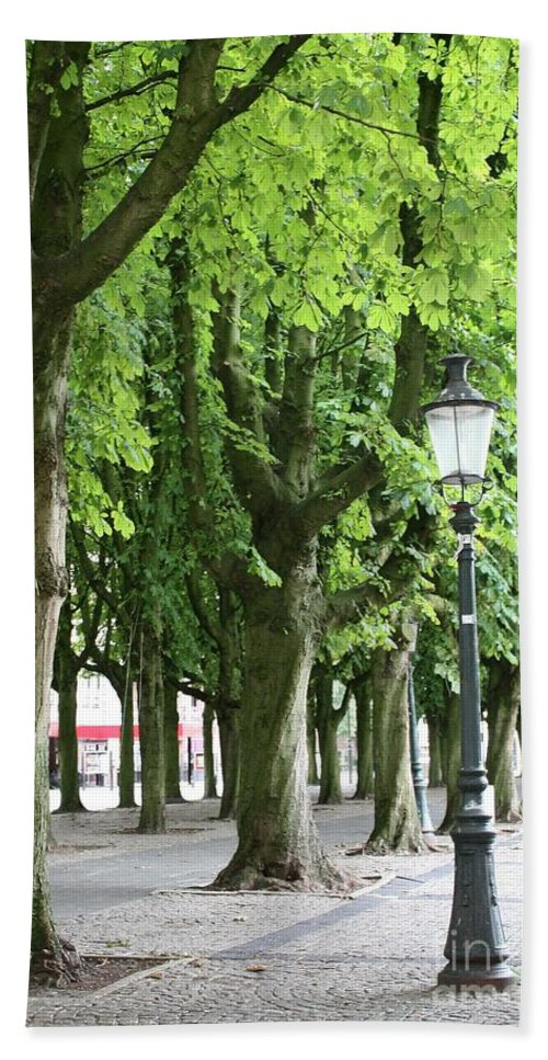 European Parks Hand Towel featuring the photograph European Park Trees by Carol Groenen
