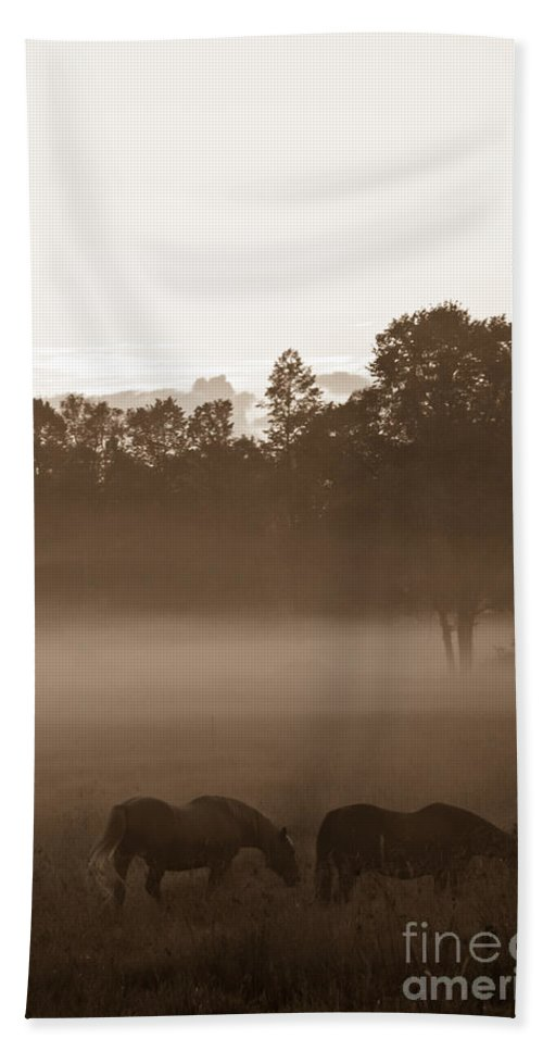 Landscape Hand Towel featuring the photograph Evening Fog by Cheryl Baxter