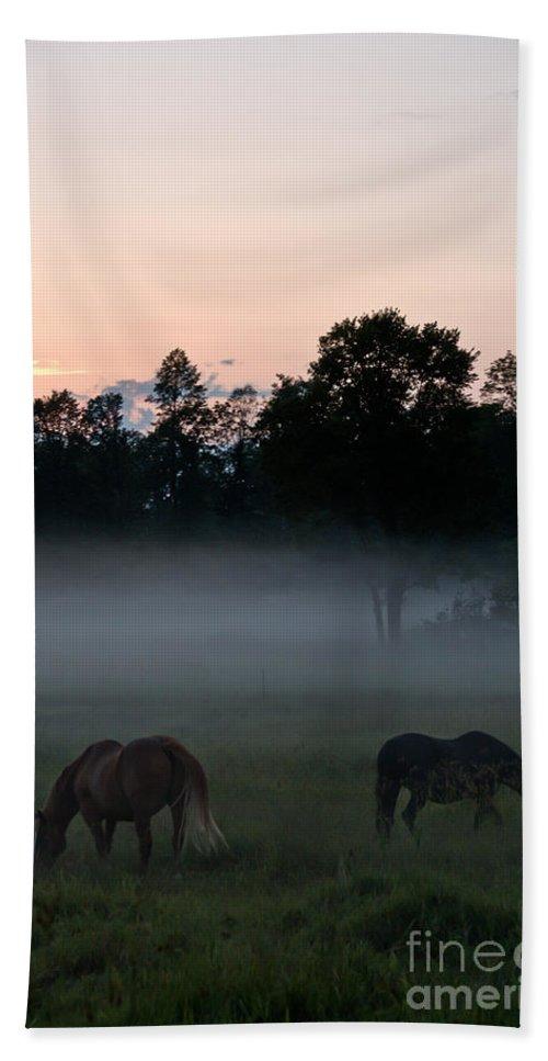 Landscape Hand Towel featuring the photograph Evening Mist by Cheryl Baxter