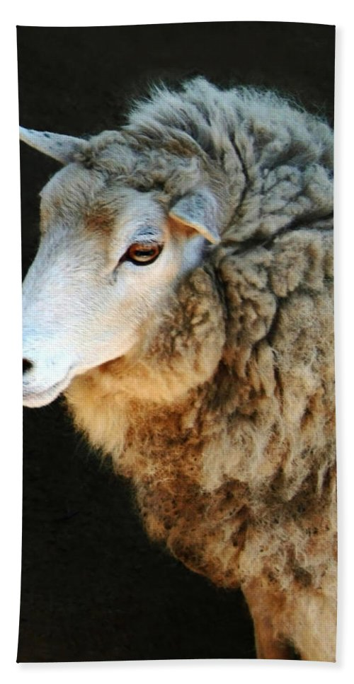 Ewe Are So Beautiful Bath Towel featuring the photograph Ewe Are So Beautiful by Ellen Henneke