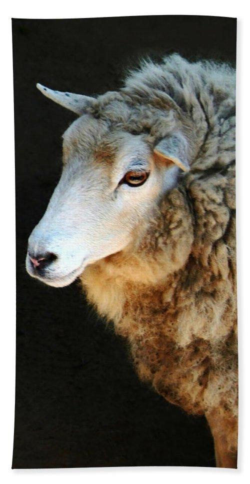 Ewe Are So Beautiful Bath Sheet featuring the photograph Ewe Are So Beautiful by Ellen Henneke