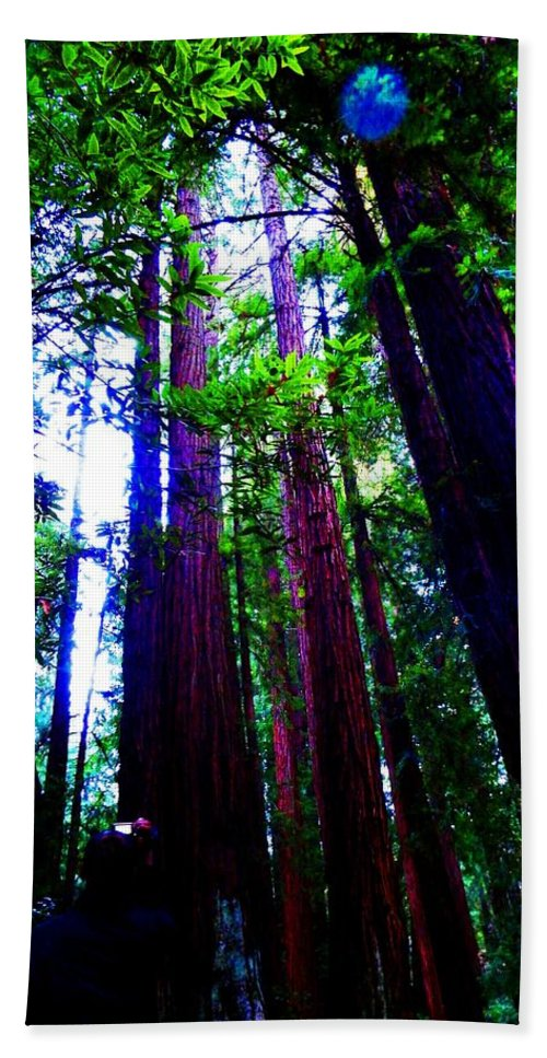 Muir Woods National Monument Bath Sheet featuring the photograph Exalted by Cathleen Cario-Reece