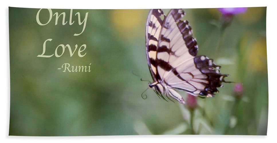 Butterfly Bath Sheet featuring the photograph Exhale Only Love by Kerri Farley