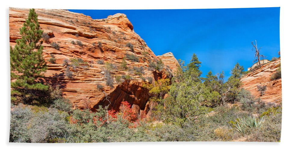 Landscape Bath Sheet featuring the photograph Exploring The Upper Plateau Of Zion by John M Bailey