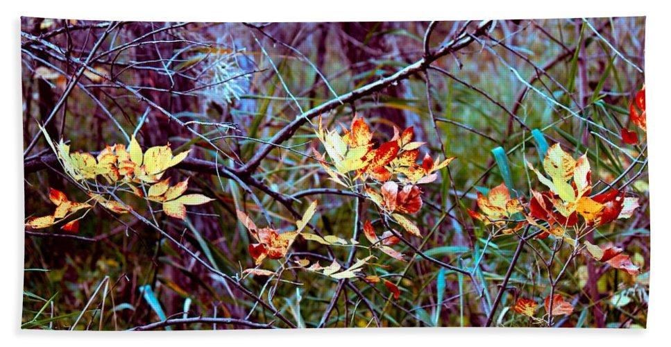 Fall Foliage Bath Sheet featuring the photograph Eye Candy by Sylvia Thornton