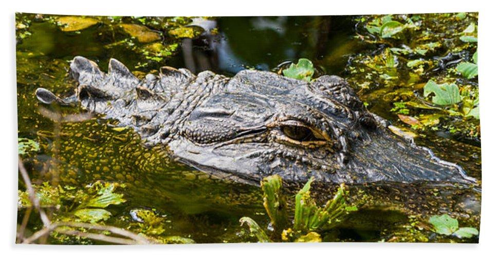 Alligator Bath Sheet featuring the photograph Eye Of The Alligator by Ed Gleichman