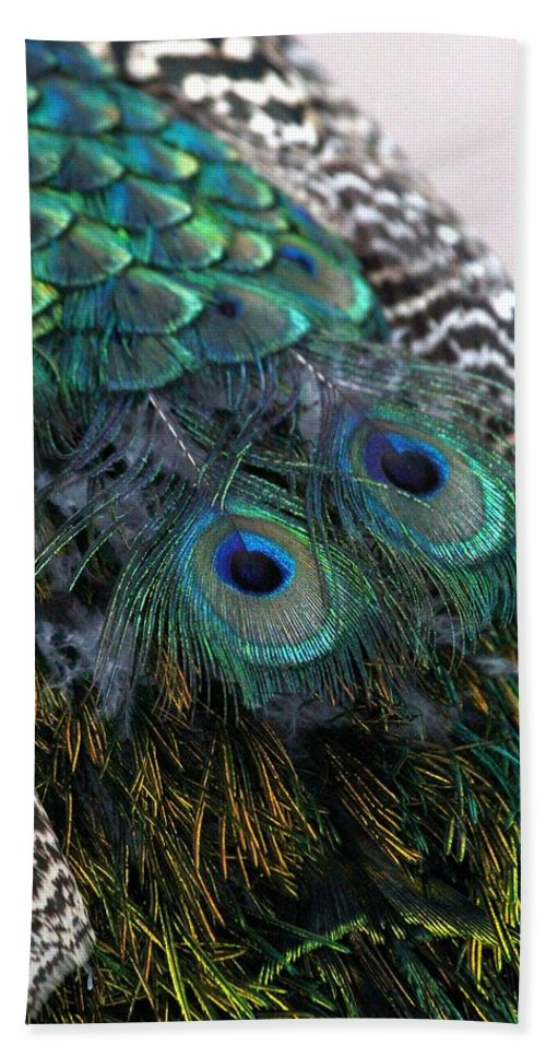 Animal Bath Sheet featuring the photograph Eyes On My Back by Davandra Cribbie