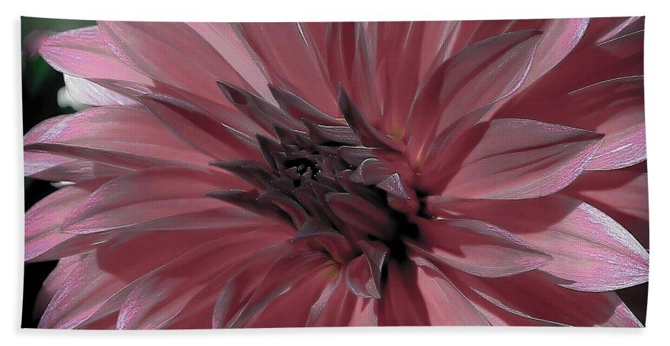 Dahlia Hand Towel featuring the photograph Faded Pink Dahlia by Athena Mckinzie