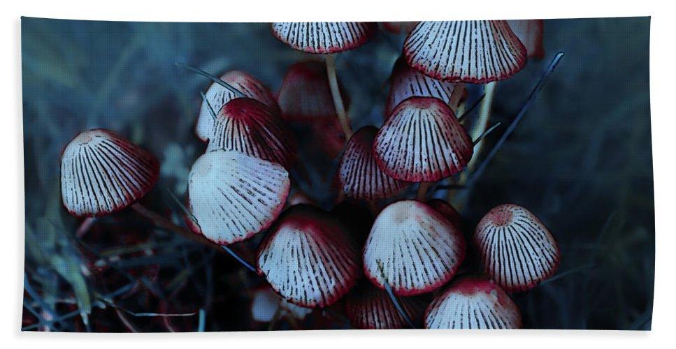 Mushroom Hand Towel featuring the photograph Faerie Houses by Jutta Maria Pusl