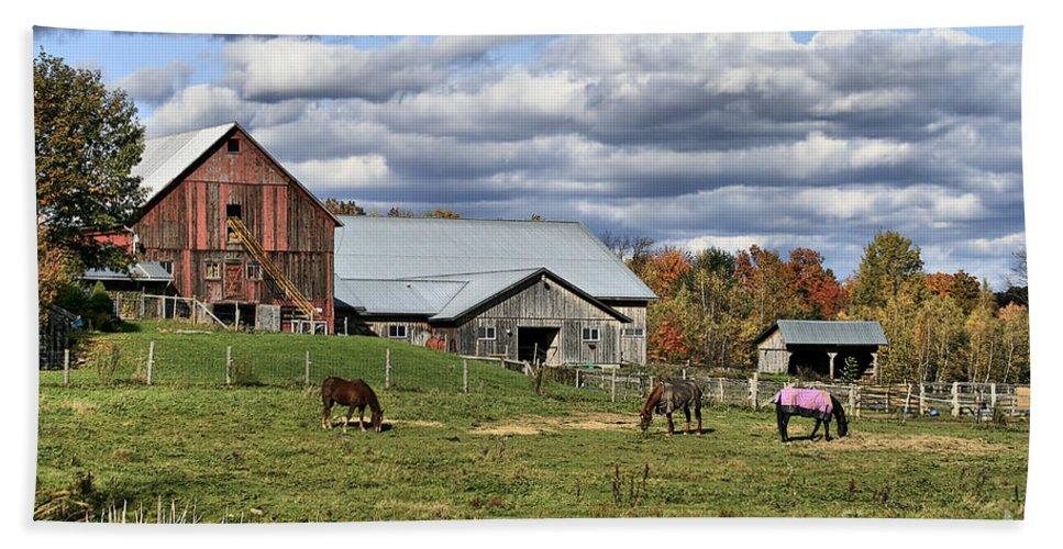 Barn. Horses Bath Sheet featuring the photograph Fall At The Horse Farm by Deborah Benoit