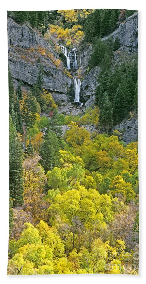 North America Hand Towel featuring the photograph Fall Color And Waterfalls In Provo Canyon Utah by Dave Welling