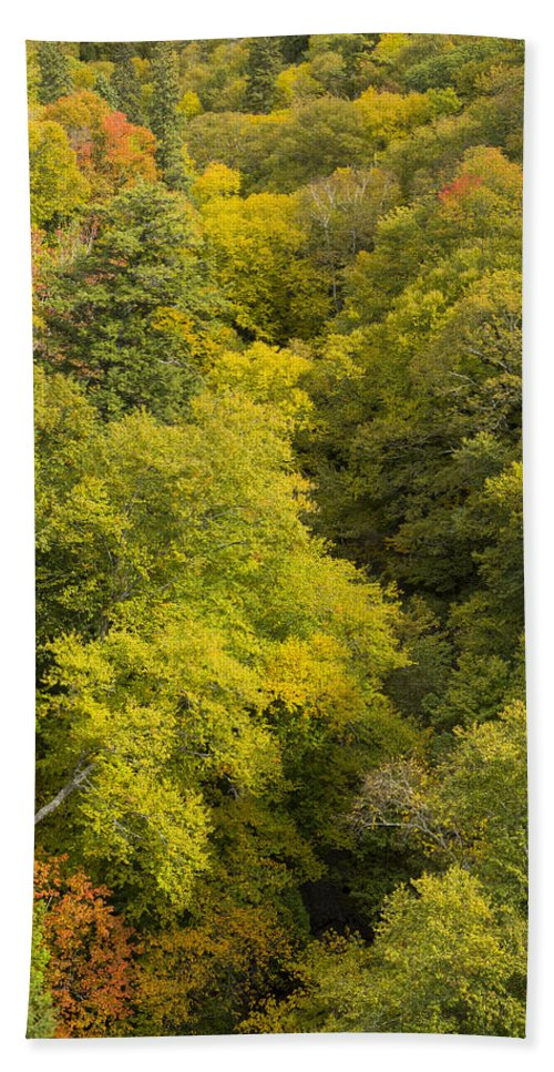 Fall Hand Towel featuring the photograph Fall Color Hills Mi 3 by John Brueske