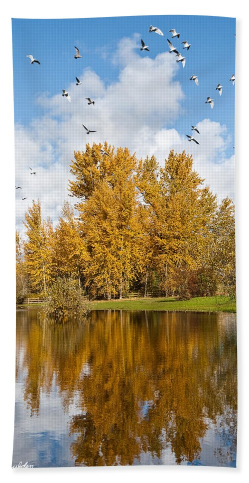 Agricultural Activity Hand Towel featuring the photograph Fall Colors Clouds And Western Gulls Reflected In A Pond by Jeff Goulden