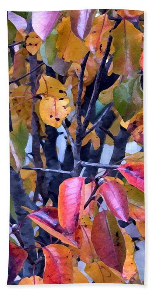 Tree Hand Towel featuring the photograph Fall Colors by Jeanne A Martin