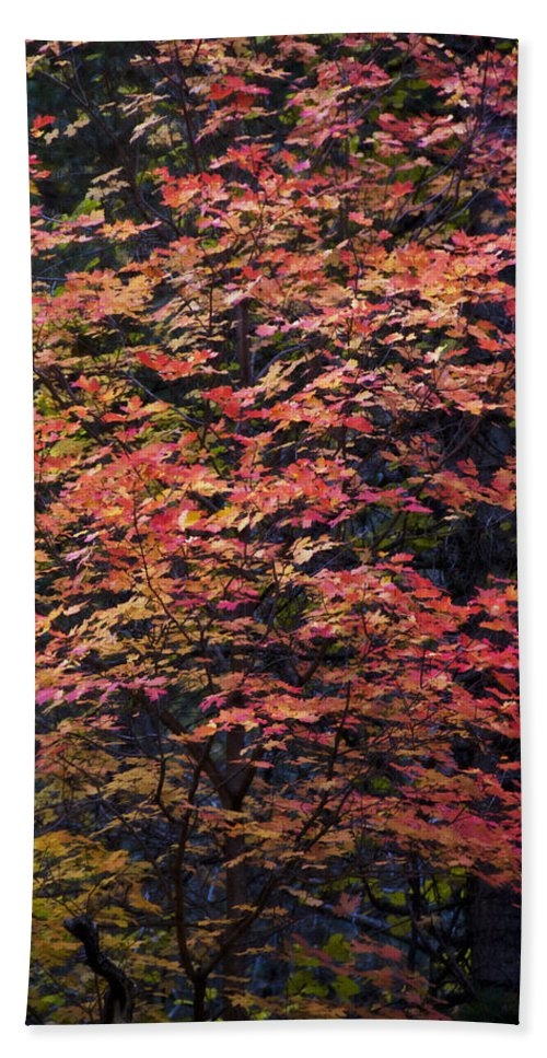 Fall Bath Sheet featuring the photograph Fall Colors by Saija Lehtonen