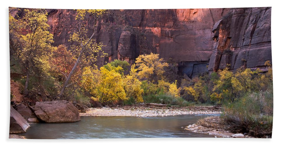 Afternoon Bath Sheet featuring the photograph Fall Foliage Along The Virgin River by Fred Stearns