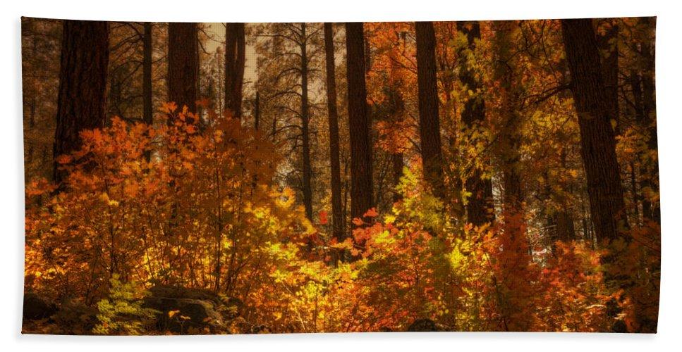 Fall Bath Sheet featuring the photograph Fall Forest by Saija Lehtonen